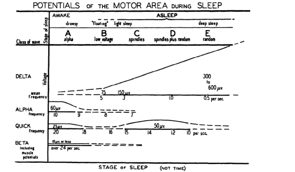 A new theory of Sleep